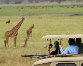 3-Day Rwanda Akagera National Park & Golden Monkeys