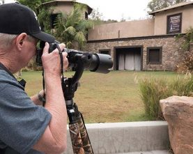 9-Day-Photography-Wildlife-&Gorilla-Tour-Rwanda