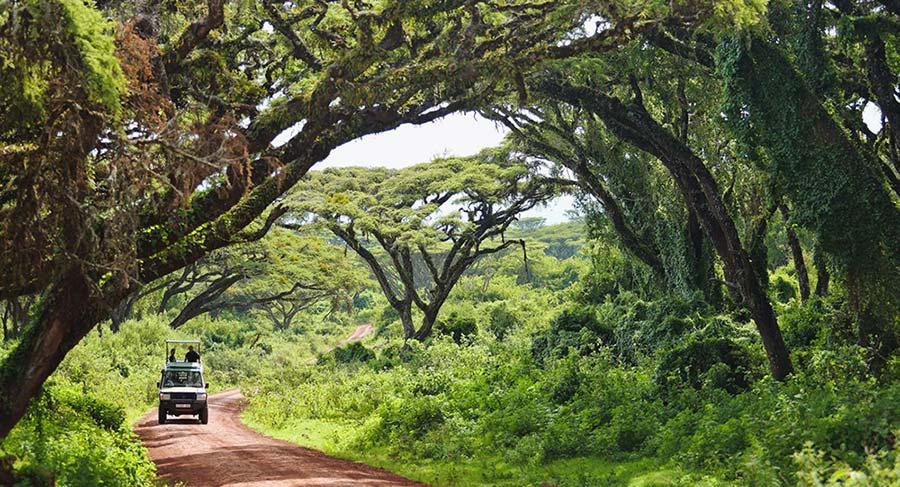 Rwanda road trip drives